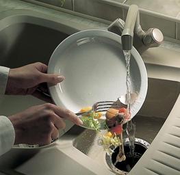 Диспоузер: минимум кухонных отходов, максимум положительных эмоций!